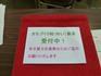 20110219_donation_yui.jpg