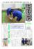 20150601_kimagure1223.png