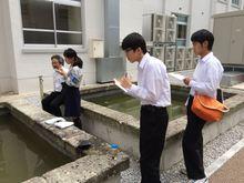 20150523_onibas007.jpg