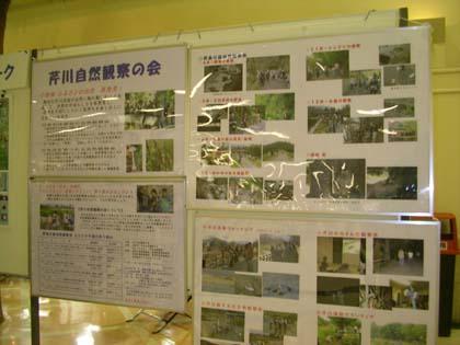 20091114_serigawa.jpg