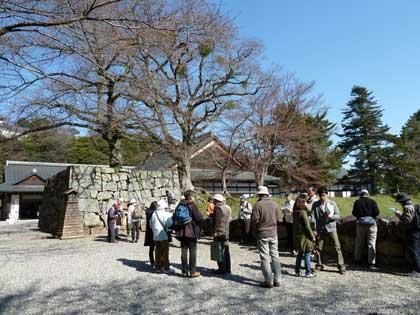 20120408_castle_hikone_05_0.jpg