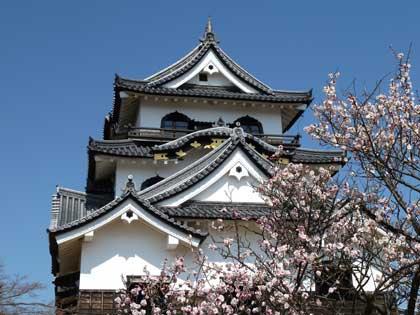 20120408_castle_hikone_33_0.jpg