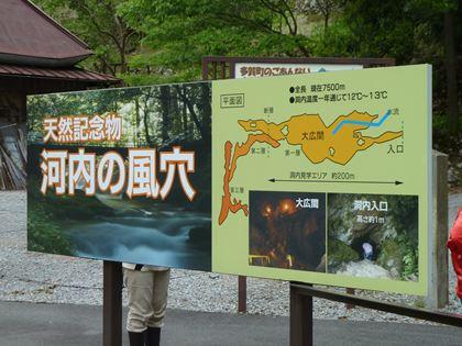 20130519_kawachi000.jpg